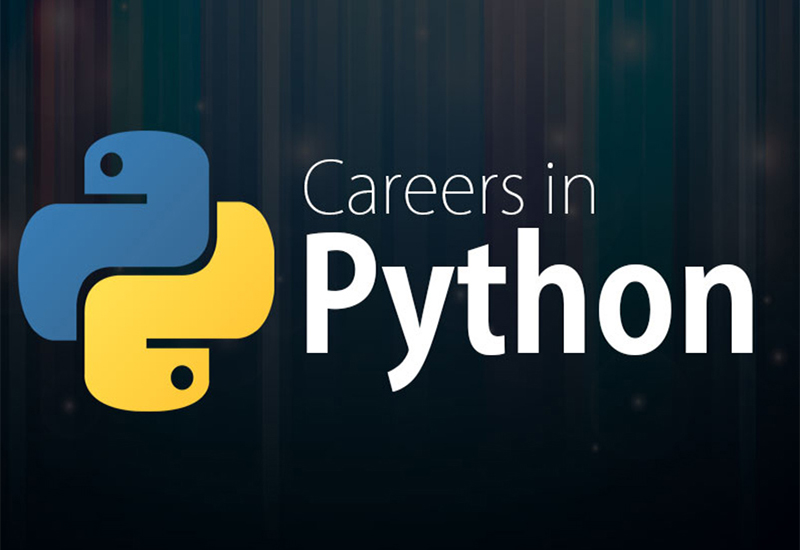 python careers